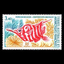 TAAF 1993 - Antarctic Fauna Fish - Sc 190 MNH