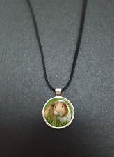 "Guinea Pig Pendant On a 18"" Black Cord Necklace Ideal Birthday Gift N411"