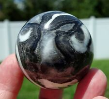 Shell Fossil Jasper Quartz Matrix Crystal Healing Sphere Ball Rock Reiki Stone