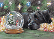 NEW Black Lab Dog, Christmas cards pack of 10 by Paul Doyle. C498X