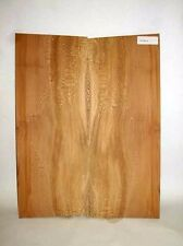 Sycamore tonewood dreadnought guitar back luthier supply back/sides SYCSPC6T