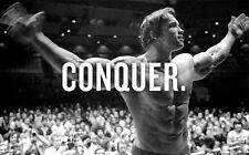 """Arnold Schwarzenegger Bodybuilding Silk Cloth Poster 40x 24"""" Decor 28"""