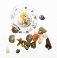 DOLLHOUSE Glass Bowl of 20 Tiny Seashells #1b MINIATURE 1:12 NRFB gemjane