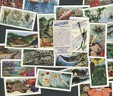 "AMALGAMATED TOBACCO 1958 SET OF 25 ""A NATURE SERIES"" CIGARETTE CARDS"