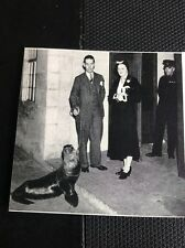 N1-2 Ephemera 1950 Picture Tv Bbc Sally The Seal 1932 Broadcasting House