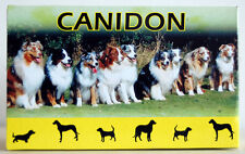 Canidon Worming Dogs 10 Tablets (no box)