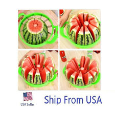 Watermelon Cutter Cantaloupe Slicer Stainless Steel Kitchen Fruit Divider USA