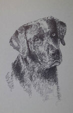 BLACK LABRADOR RETRIEVER DOG ART PORTRAIT #78 Kline adds dogs name free. LAB