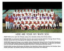 1971 White Sox Team Photo Comiskey Park Melton-May-Wood-John-Herrmann Color 8x10