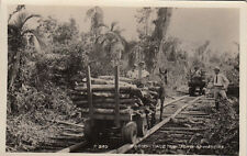 OLD RPPC ITARIRY BRAZIL TIPICO TRANSPORTE DE MADEIRA. TRANSPORT OF WOOD