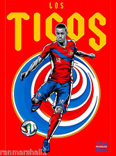 2014 FIFA World Cup Soccer Costa Rica Brazil Sports Travel Advertisement Poster
