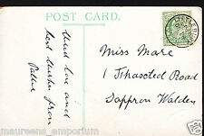 Genealogy Postcard - Family History - Mare - Thaxted Rd, Saffron Walden BH6578