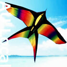 175x105cm Swallow Bird Kite Line Grip included Fly High OKITE3301&OKLIN2100