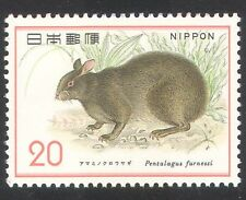 Japan 1974 Rabbit/Animals/Nature/Wildlife/Conservation/Environment 1v (n39359)