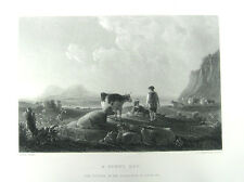 CATTLE COWS & SHEPHERD REST IN FIELD ~ 1868 CUYP Landscape Art Print Engraving