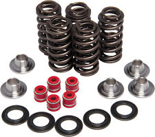 POLARIS SPORTSMAN 800 KIBBLEWHITE VALVE SPRING KIT 82-82060 06-07