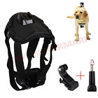 Dog Hound Fetch Harness Chest Belt Strap Mount For GoPro Hero 1 2 3 3+ 4 SJ4000