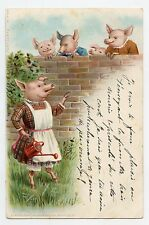 Cochons humanisés . L'arrosoir . Dressed pigs .