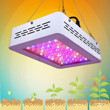 300W LED Grow Light Lamp Full Spectrum Panel Veg Flower for Hydro Indoor Plant G