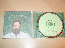 Iron & Wine - Our Endless Numbered Days (CD) 12 Tracks - Mint - Fast Postage