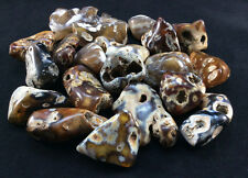 Medium Polished Agatized Fossil Coral-1512M, Metaphysical Crystal Balance Tumble