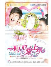 Fall In Love - 2011 Taiwanese TV Series - Chinese Subtitle