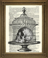 HUMAN SKULL IN CAGE: Vintage Dictionary Print with Black & White Death Art