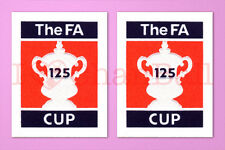 FA CUP 125th Anniversary 2005-2006 Sleeve Soccer Patch / Badge