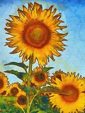 ABSTRACT PAINTING SUN FLOWER PLANT NATURE COOL POSTER ART PRINT PICTURE BB235A