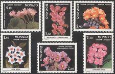 MONACO 1981 piante esotiche/CACTUS PIANTE GRASSE cactus///Fiori/NATURA SET 6v (n43036)
