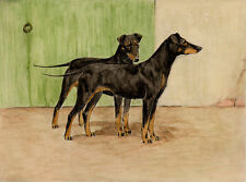 MANCHESTER TERRIER CHARMING DOG GREETINGS NOTE CARD TWO LOVELY STANDING DOGS
