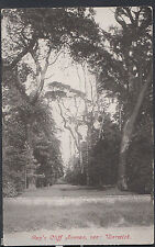 Warwickshire Postcard - Guy's Cliff Avenue, Near Warwick  RT294