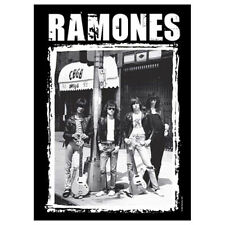 """RAMONES CBGB Photo Tapestry Cloth Poster Flag Wall Banner New 30"""" x 40"""""""