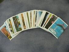 10 Sticker  REWE Unsere Erde, Glitzer,  aussuchen