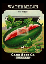 REPRINT PICTURE of card seed co WATERMELON TOM WATSON seed packs fredonia ny 5x7