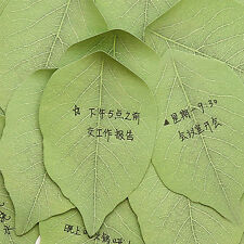 Good Sale Exquisite 1pcs Leaves Post it Sticky Notes Cute Sticker Leave Message