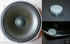 Paint renovation for ROLA Celestion T2619 Woofer - Ditton 25, 44, 66