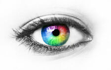 Large Framed Print - Human Eye with Multi-Coloured Pupil (Picture Poster Medical