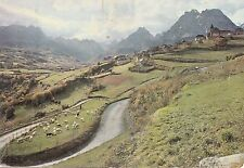 BF12642 moutons dans les lacets col d aspin sheep  france front/back image