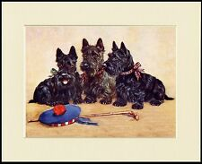 SCOTTISH TERRIER THREE DOGS CHARMING DOG PRINT MOUNTED READY TO FRAME