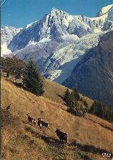 Alte Postkarte - l'aiguille du Midi et le glacier des Bossons