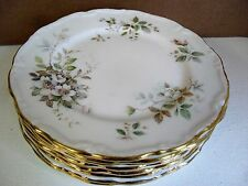 Royal Albert HAWORTH tea plate up to 8 available