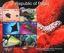 Sea Marine Life Stamp Sheet #25 2013 Palau (Turtles/Eagle Ray/Angelfish/Fish)