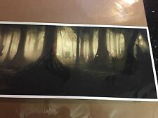 Star Wars Return of the Jedi Print Screen Print Limited Edition Size 12 x 36 in