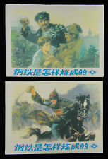 Set of 2 Volumes China Comic Strip in Chinese: The Making of Steel