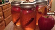 Moonshine Still Flavors 30 Recipes Apple Pie, Peach Pie, Sour Cherry + Many More