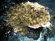 Mallow herb Wicca/Pagan/Spell Supplies/Herbs/Incense witchcraft