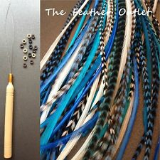 Feathers Hair Extensions Kit Lot 10 Grizzly long skinny Aqua Turquoise BLUES KIT