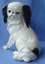 1950s JAPANESE CHIN PEKINGESE GERMANY 10""