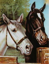 "Two Horses, ""Bred in the Purple"" by R Atkinson Fox"
